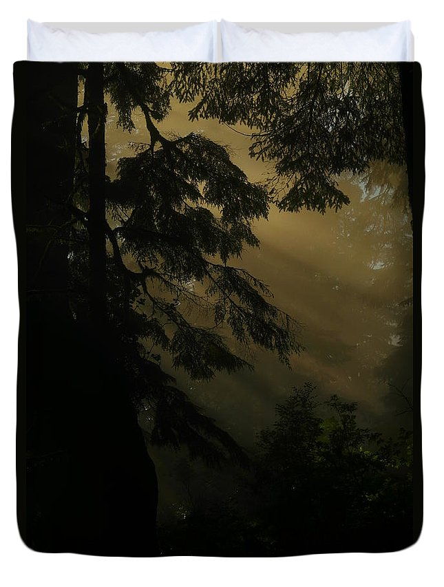 Forests Duvet Cover featuring the photograph Those Dreams We Aspire by Jeff Swan