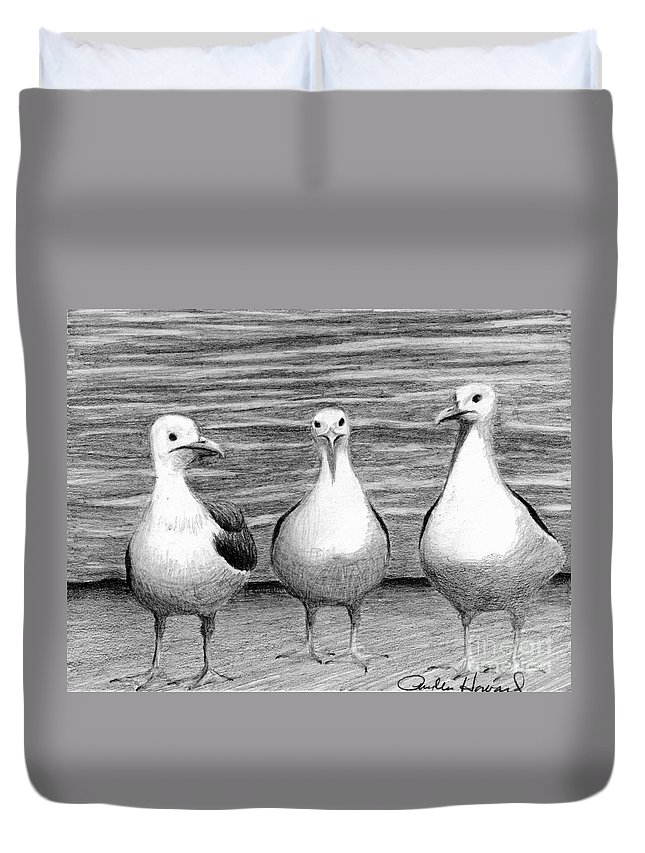 Sea Gulls Duvet Cover featuring the drawing Three Amigos by Phyllis Howard