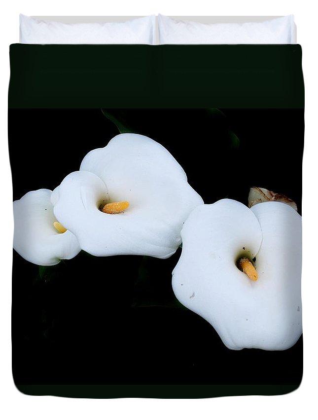 Calla Duvet Cover featuring the photograph Three Calla Lilies by Tracey Harrington-Simpson