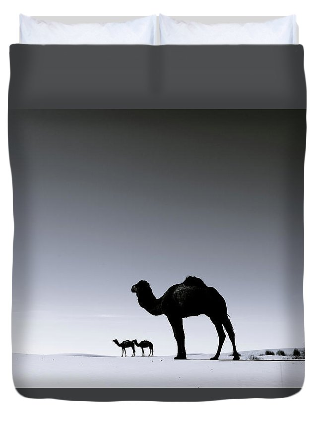 Scenics Duvet Cover featuring the photograph Three Camels In The Sahara Desert by Zodebala