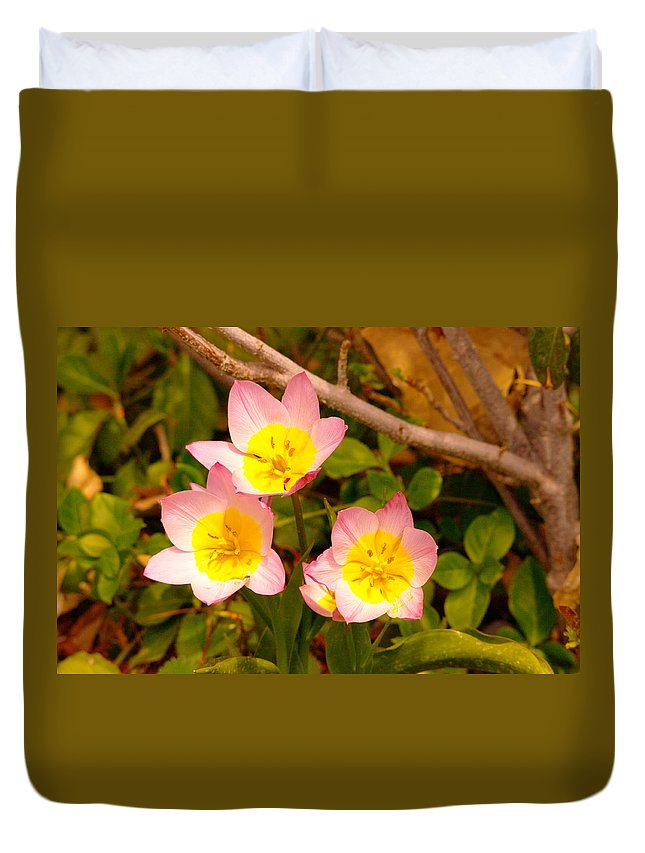 Flowers Duvet Cover featuring the photograph Three Flowers by Jeff Swan