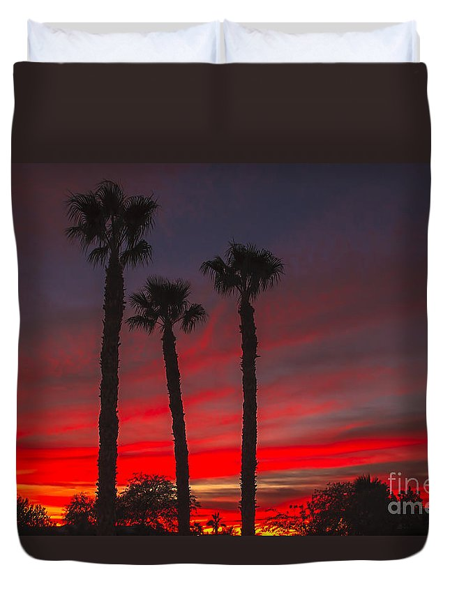 Sunrise Duvet Cover featuring the photograph Three Palm Sunset by Robert Bales
