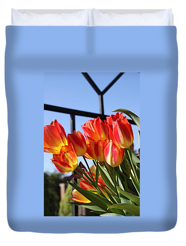 Flower Duvet Cover featuring the photograph Through The Fence by Tina Meador