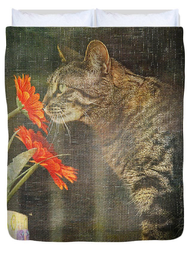 Window Duvet Cover featuring the photograph Through The Window by Lori Frostad