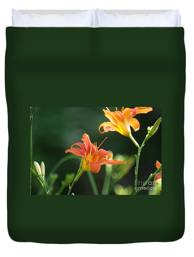 Orange Duvet Cover featuring the photograph Tiger Lily And Bud  # by Rob Luzier
