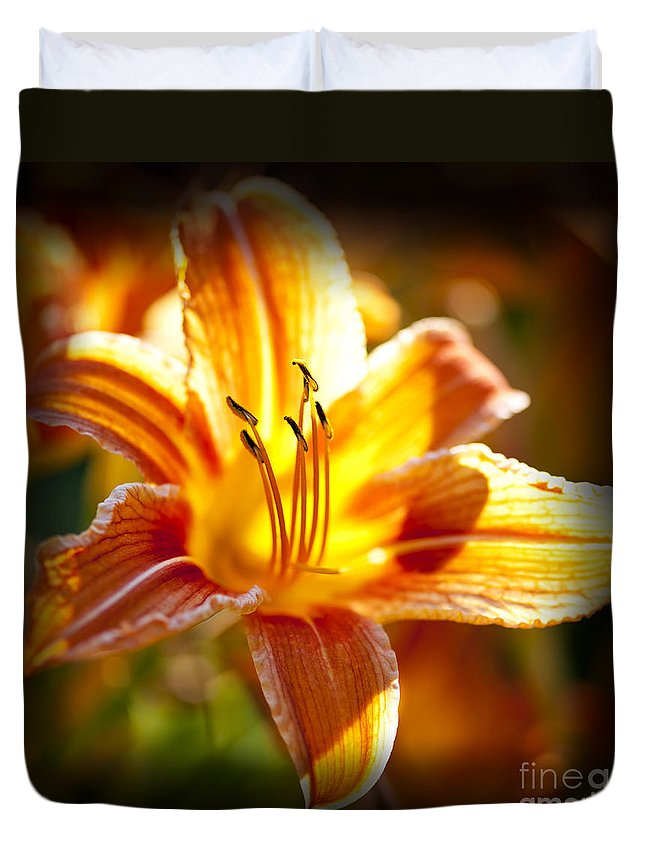 Tiger Lily Duvet Cover featuring the photograph Tiger Lily Flower by Elena Elisseeva
