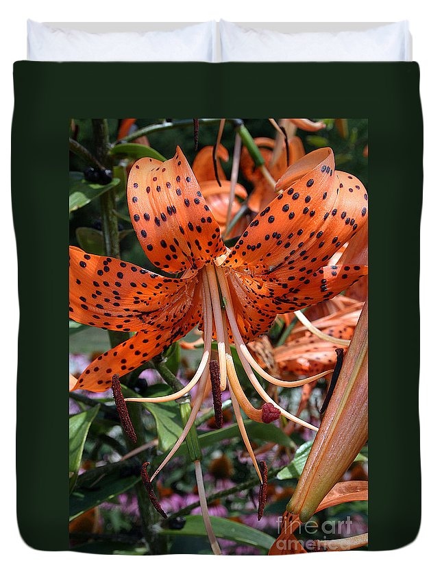 Ffower Duvet Cover featuring the photograph Tiger Lily by Kathy DesJardins