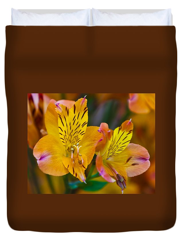 Plant Duvet Cover featuring the photograph Tiger Lily by Maj Seda
