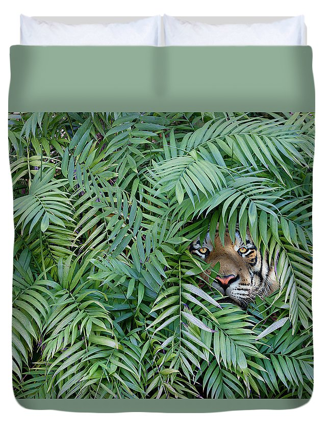 Hiding Duvet Cover featuring the photograph Tiger Peering Through Dense Forest by John M Lund Photography Inc