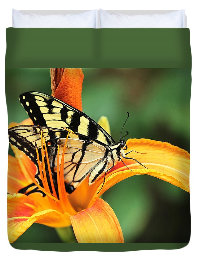 Butterfly Duvet Cover featuring the photograph Tiger Swallowtail Butterfly On Daylily by Mother Nature