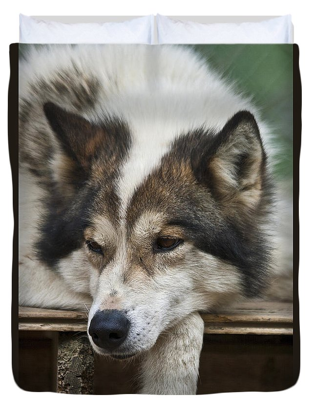 Heiko Duvet Cover featuring the photograph Time For A Rest by Heiko Koehrer-Wagner