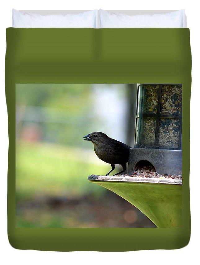 Tiny Seed For A Tiny Bird Duvet Cover featuring the photograph Tiny Seed For A Tiny Bird by Maria Urso