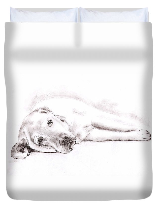 Dog Duvet Cover featuring the drawing Tired Labrador by Nicole Zeug