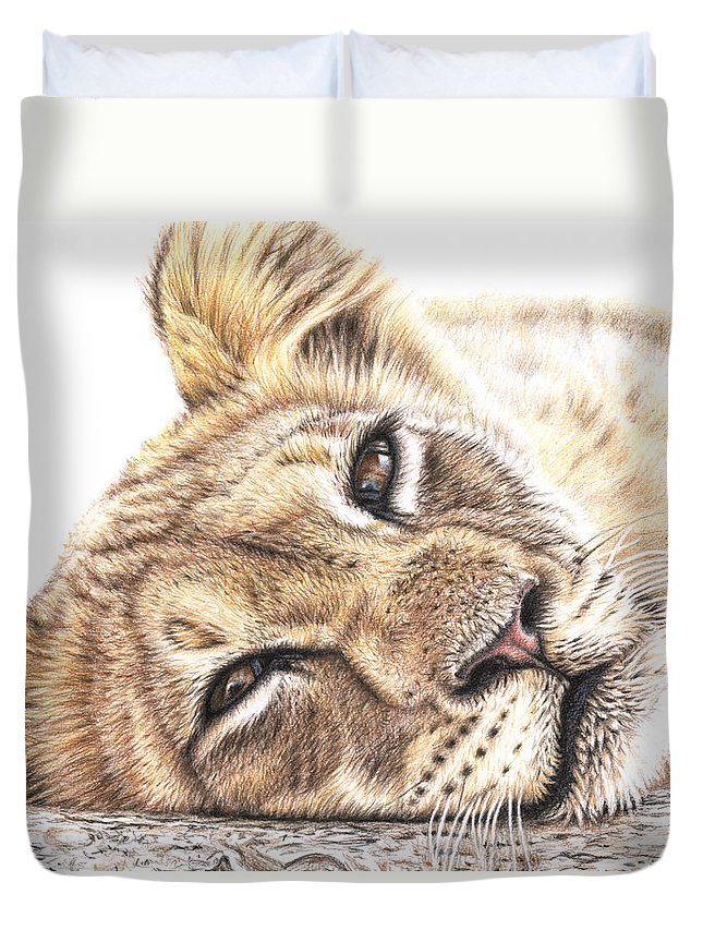 Lion Duvet Cover featuring the drawing Tired Young Lion by Nicole Zeug