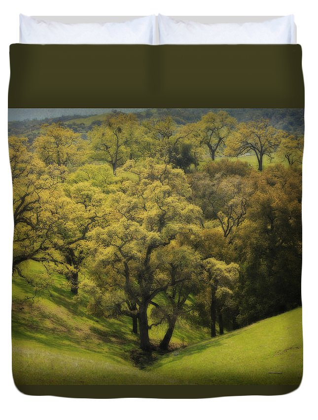 Sunol Regional Wilderness Duvet Cover featuring the photograph To Comfort You by Laurie Search