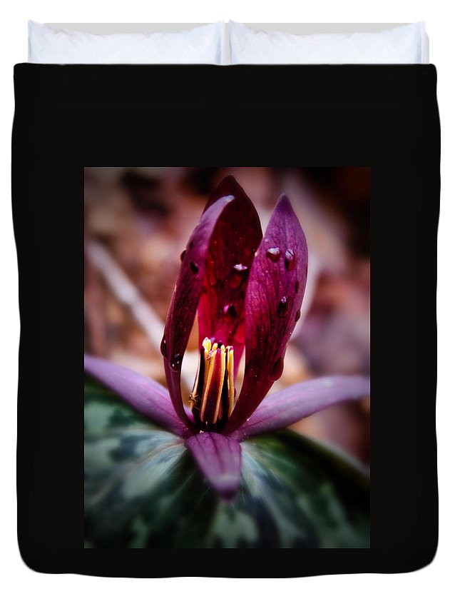 Flora Duvet Cover featuring the photograph Toadshade Trillium by Lynne Jenkins
