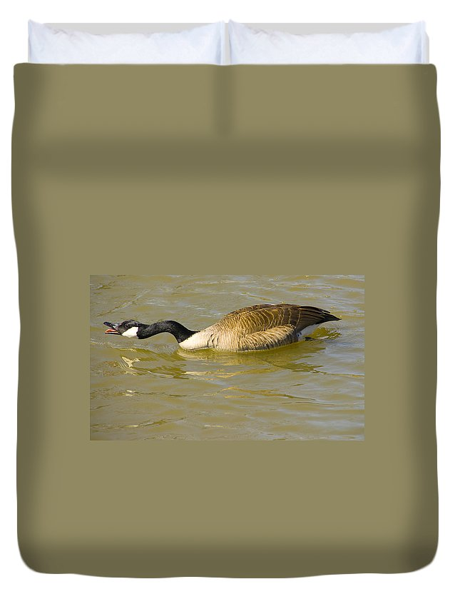 Tulsa Photographs Duvet Cover featuring the photograph Tongue In Goose I by Vernis Maxwell