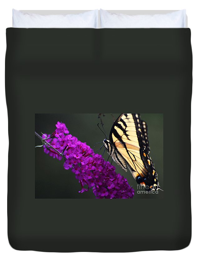 Butterfly Duvet Cover featuring the photograph Too Close For Comfort by Judy Wolinsky