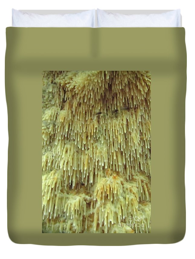 Toothed Fungi Macro Toothed Fungi Of North America Natural Design Cathedral Fungi Forest Flora Duvet Cover featuring the photograph Toothed Fungi Macro by Joshua Bales