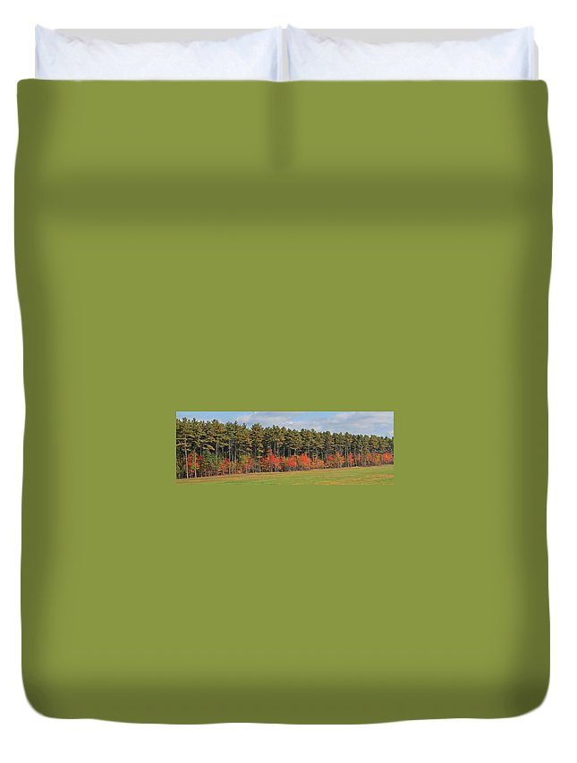 Trees Duvet Cover featuring the photograph Towering Evergreens by Michael Saunders