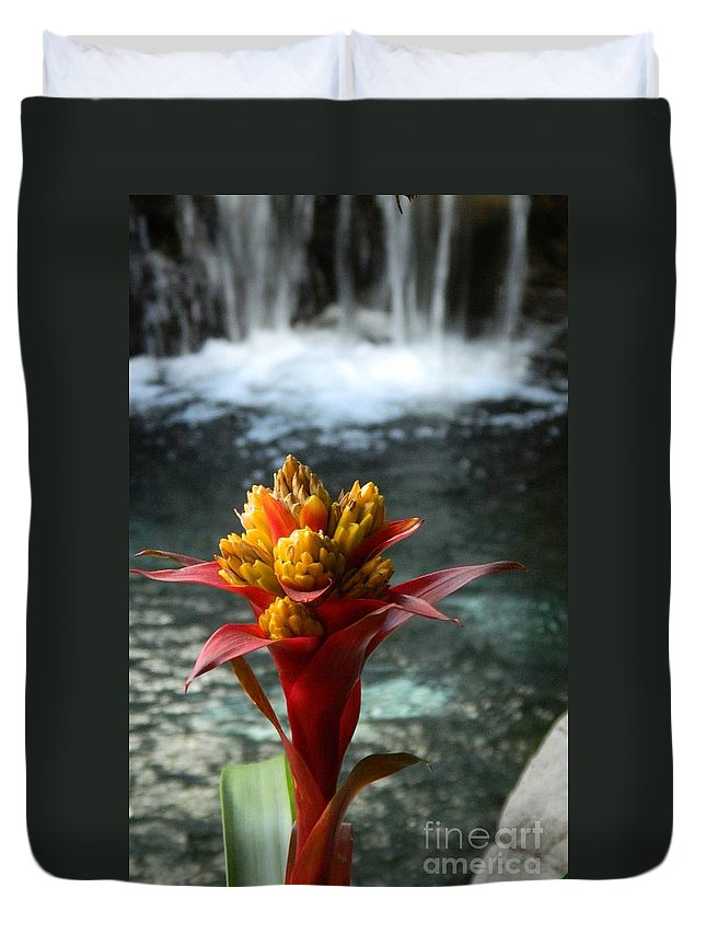 Bromeliad Duvet Cover featuring the photograph Tranquility by Jennifer Boisvert
