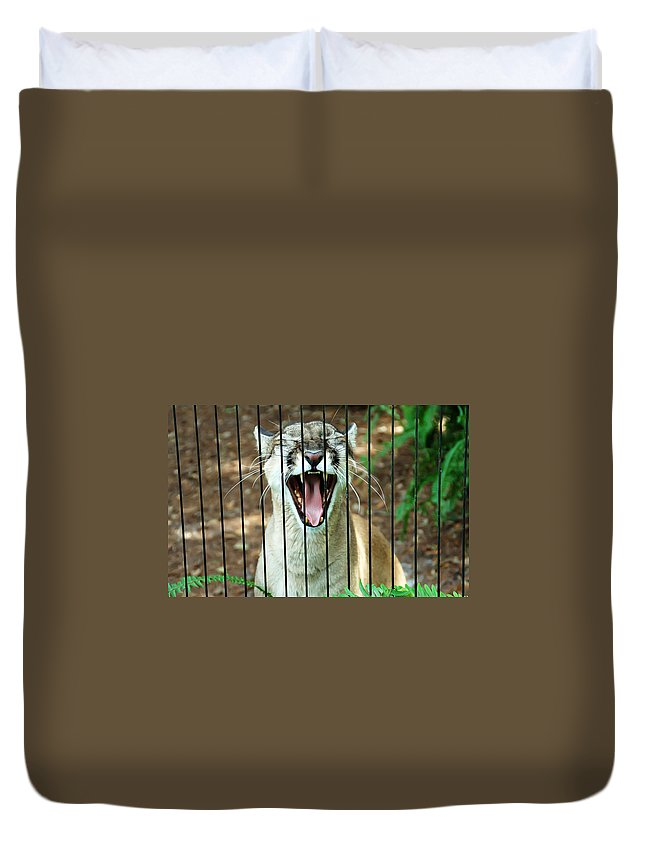 Panther Duvet Cover featuring the photograph Trapped In A Cage by Aimee L Maher ALM GALLERY