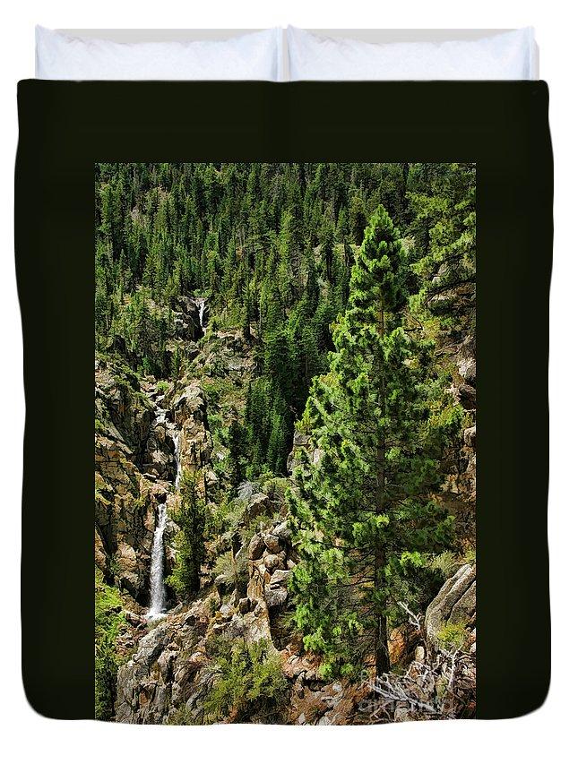 Leavitt Falls Duvet Cover featuring the photograph Tree Above Leavitt Falls by Blake Richards