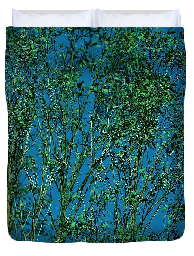 Linda Brody Duvet Cover featuring the photograph Tree Abstract Blue Green by Linda Brody