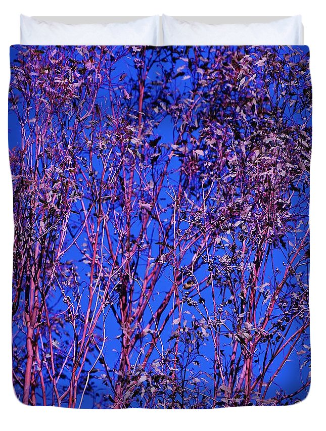 Linda Brody Duvet Cover featuring the photograph Tree Abstract Purple Blue by Linda Brody