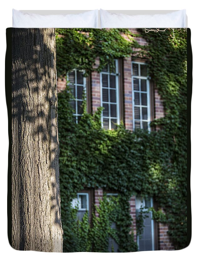 Michigan State University Duvet Cover featuring the photograph Tree And Ivy Windows Michigan State University by John McGraw