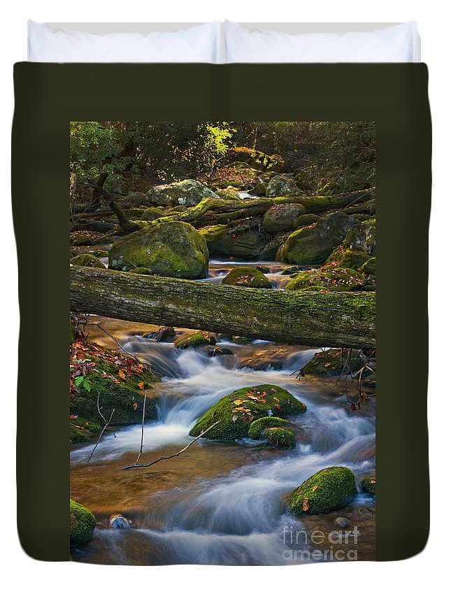 Smoky Mountains Duvet Cover featuring the photograph Tree Bridge In The Smokies by Paul W Faust - Impressions of Light
