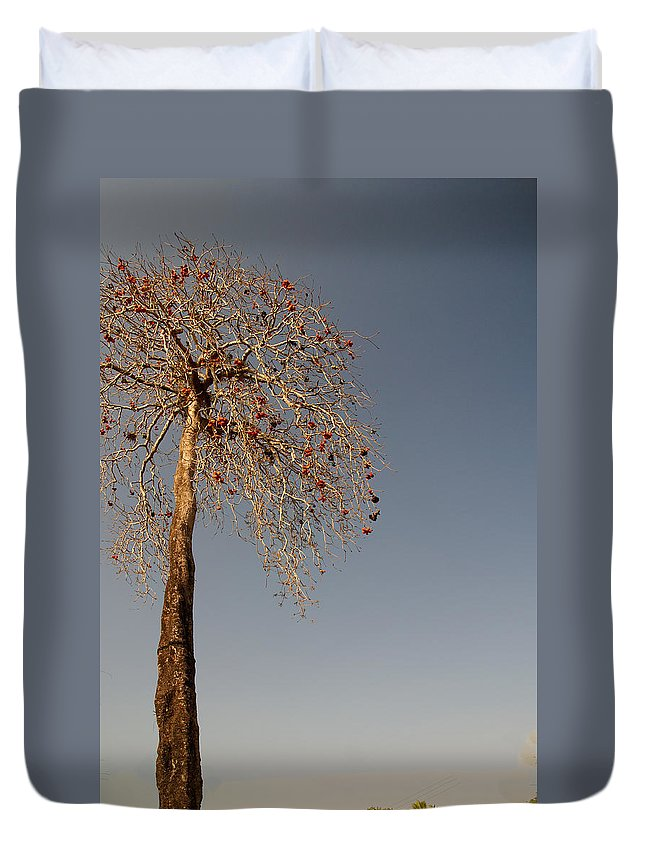 Colva Duvet Cover featuring the digital art Tree In India by Carol Ailles