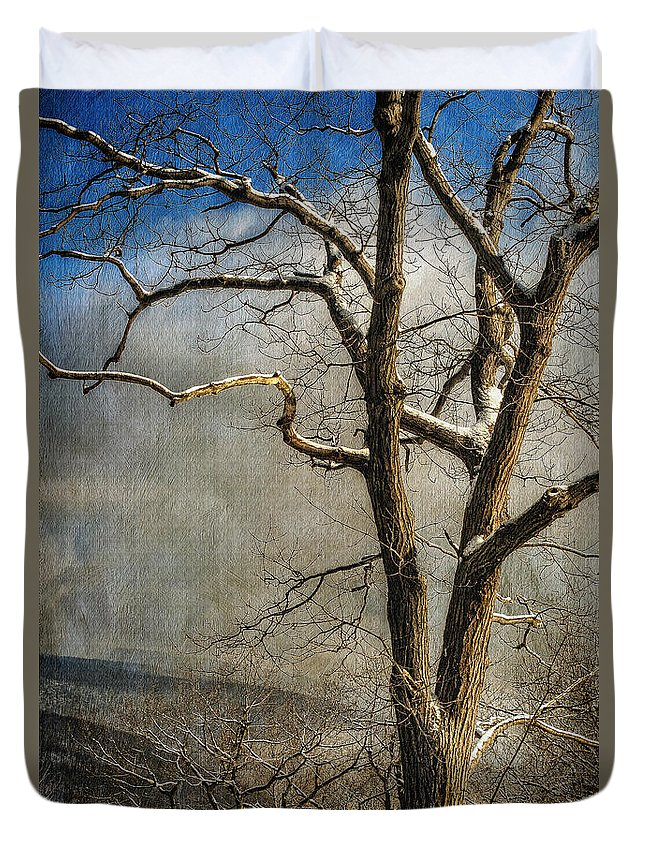 Winter Duvet Cover featuring the photograph Tree In Winter by Lois Bryan