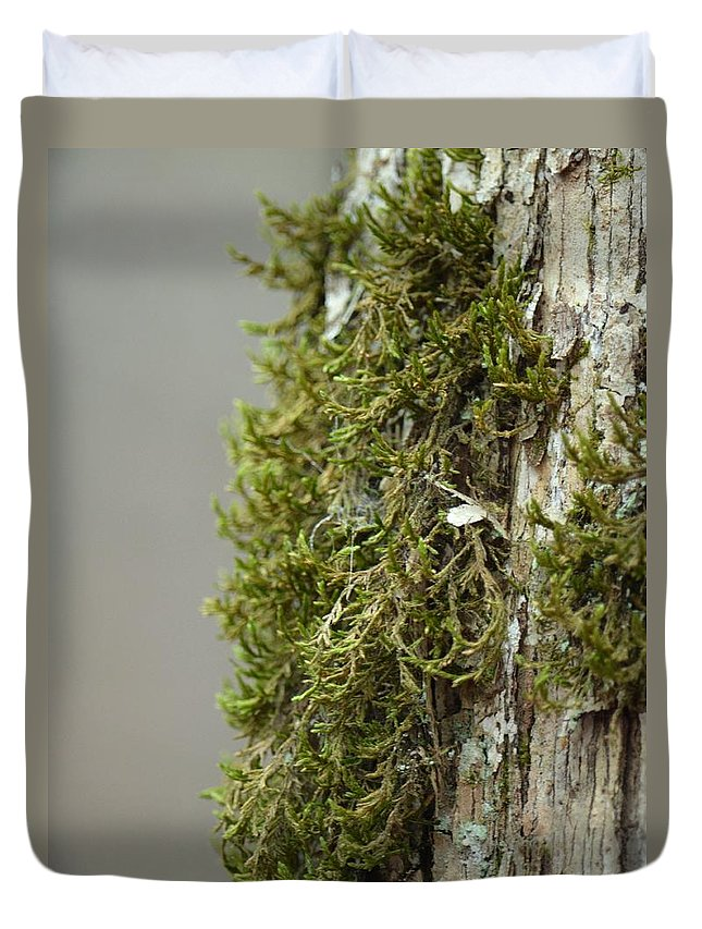 Tree Moss Closeup 2013 Duvet Cover featuring the photograph Tree Moss Closeup 2013 by Maria Urso