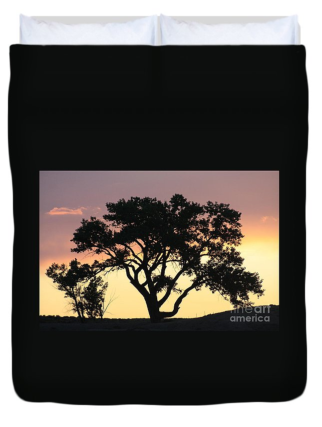 Tree Duvet Cover featuring the photograph Tree Of Life by Brandi Maher