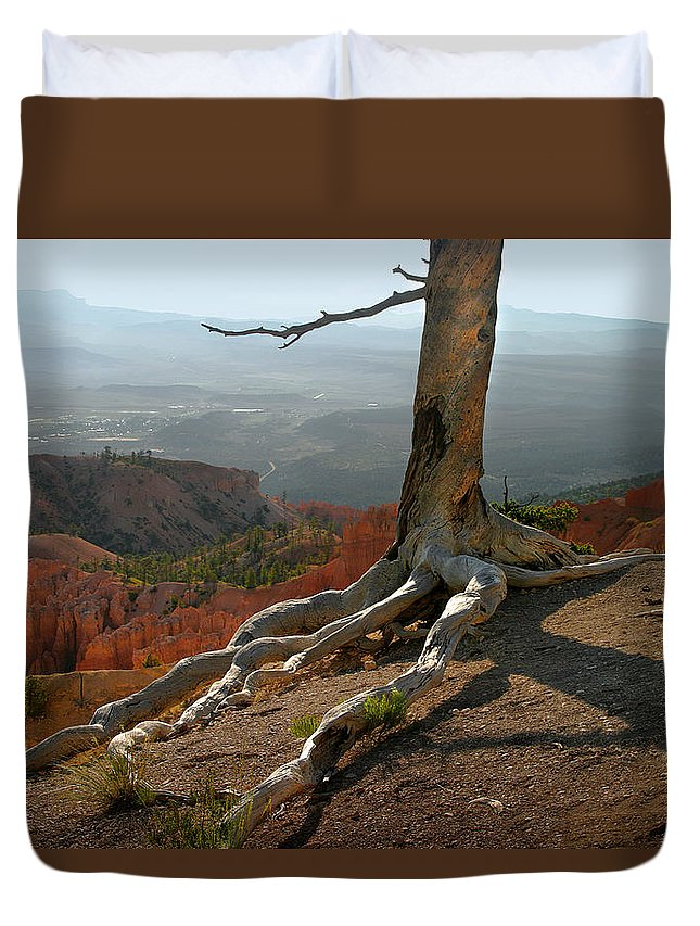 Art Duvet Cover featuring the photograph Tree On A Ridge In Bryce Canyon by Randall Nyhof