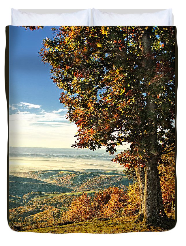 Vista Duvet Cover featuring the photograph Tree Overlook Vista Landscape by Timothy Flanigan