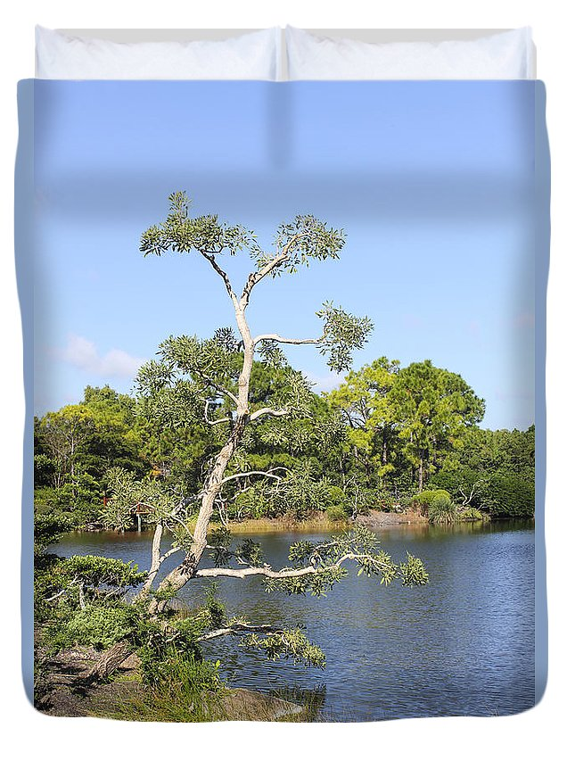 Trees Duvet Cover featuring the photograph Tree Series 43 by Carlos Diaz