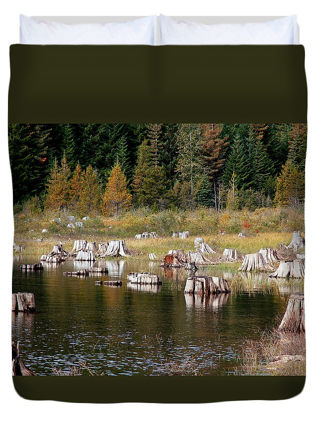 Trees Duvet Cover featuring the photograph Tree Stumps At Clear Lake by Athena Mckinzie