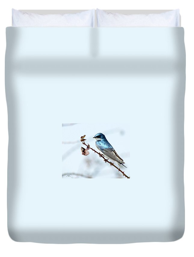 Swallow Duvet Cover featuring the photograph Tree Swallow by Jenny Gandert