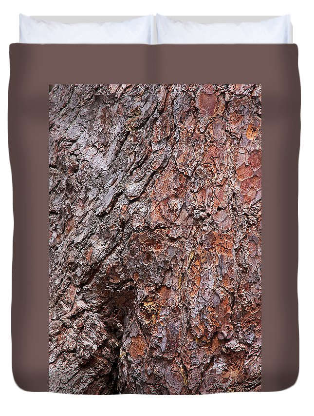 Tree Bark Duvet Cover featuring the photograph Tree Trunk Abstract by Stuart Litoff