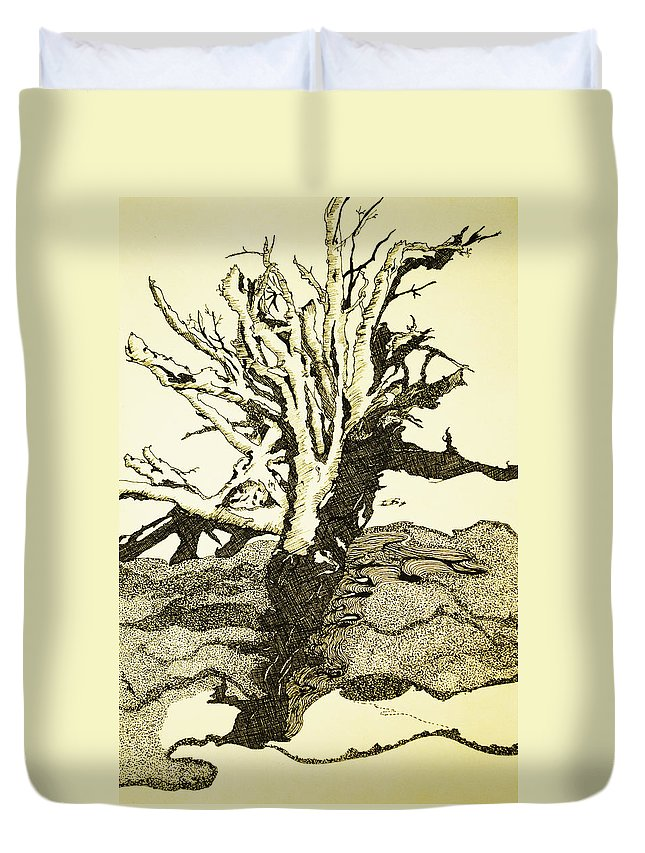 Drift Wood Duvet Cover featuring the drawing Tree Trunk By The Sea by Daniel P Cronin
