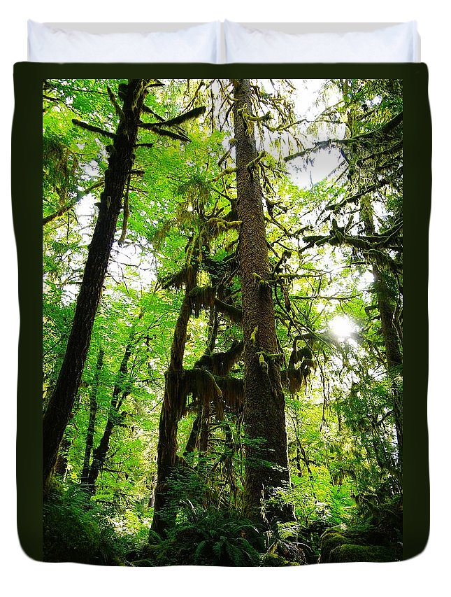 Trees Duvet Cover featuring the photograph Trees In The Hoh National Rain Forest by Jeff Swan