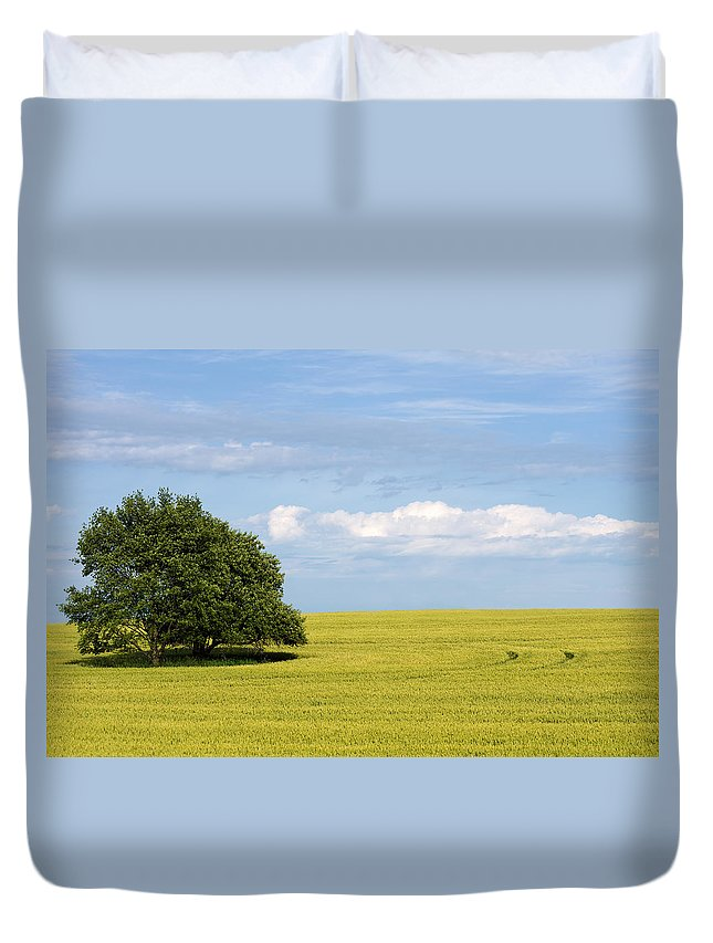 Grass Family Duvet Cover featuring the photograph Trees In Wheat Field by Simplycreativephotography