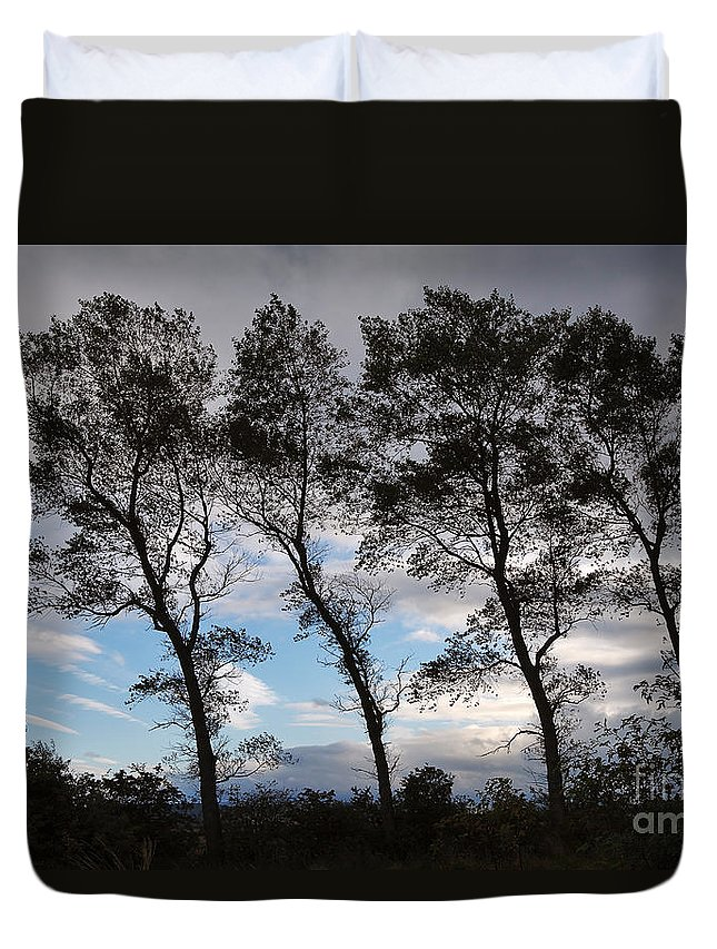 Nature Duvet Cover featuring the photograph Trees by Louise Heusinkveld