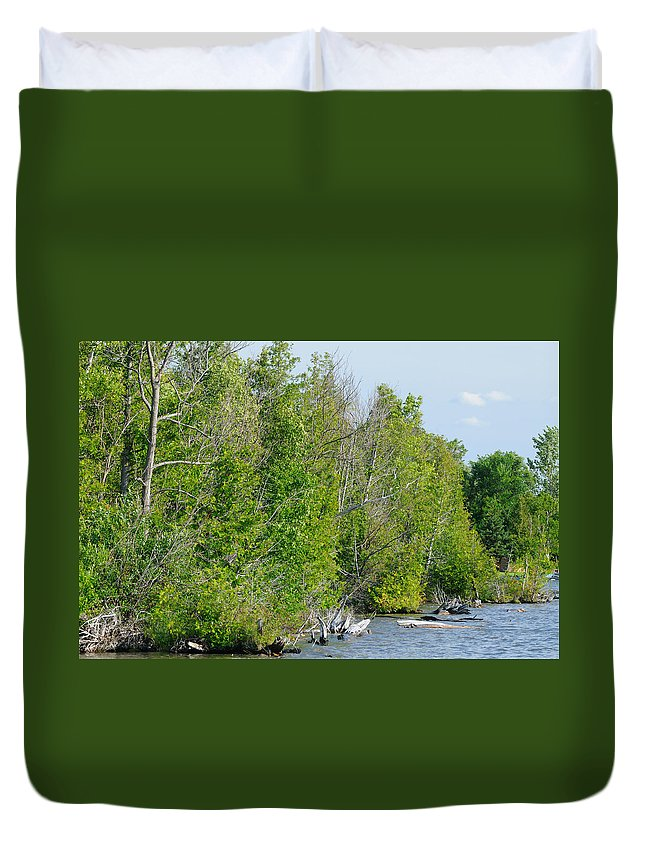 Landscape Duvet Cover featuring the photograph Trees On A Lakeshore by Scott Angus