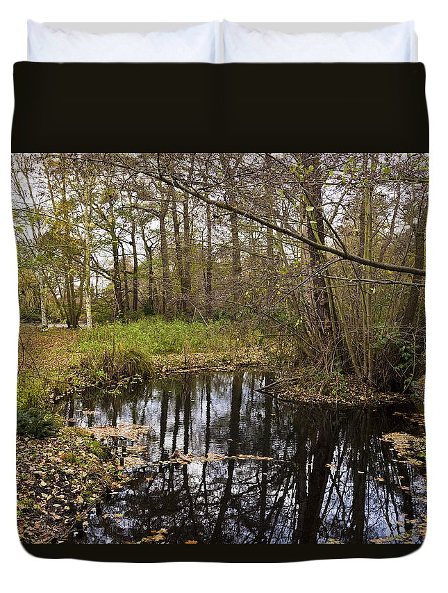 Forest Floor Duvet Cover featuring the photograph Trees Reflection by Maj Seda