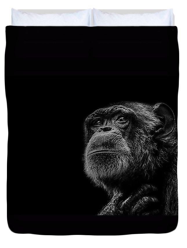 Chimpanzee Duvet Covers