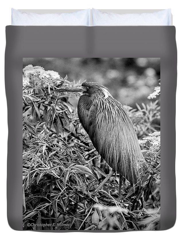 Heron Duvet Cover featuring the photograph Tri-color - Bw by Christopher Holmes
