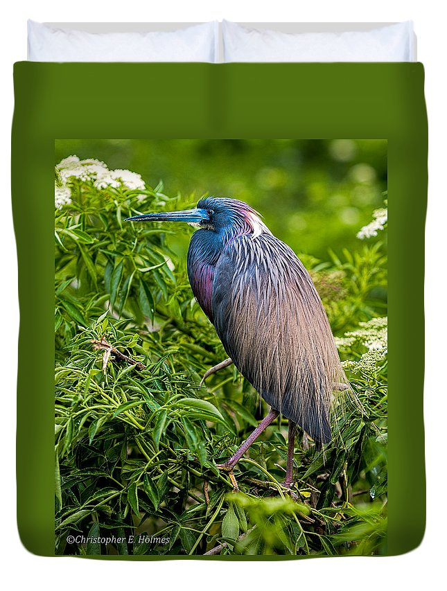 Heron Duvet Cover featuring the photograph Tri-color Heron by Christopher Holmes
